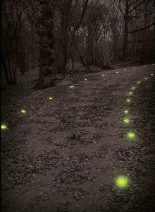 marquage d'itinéraire de convois avec marqueurs lumineux verts Cyalume