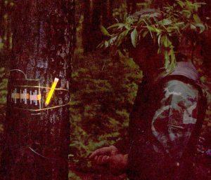 Marquage d'explosifs avec baton lumineux jaune