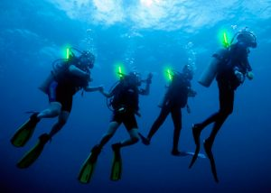 Identification de plongeurs avec bâtons lumineux Cyalume