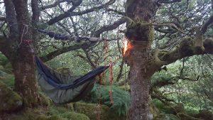 Éclairage de campement extérieur