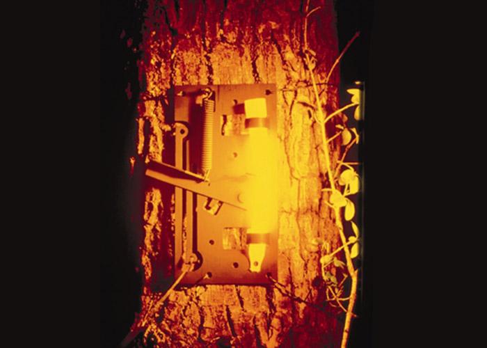 détecteur lumineux intrusion cyalume