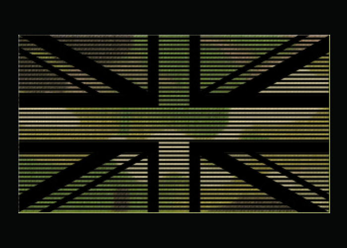 patch dual IR drapeau identification